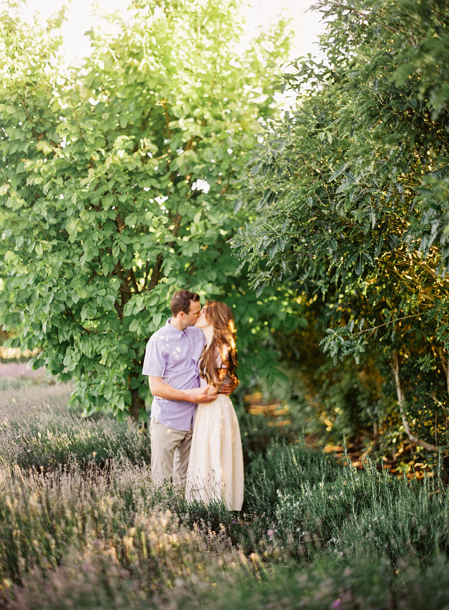 marionhphotography-marion_heurteboust-intimate_wedding_photographer-Kaikoura_Lavender_Farm_and_Dylans_Cottages-new_zealand